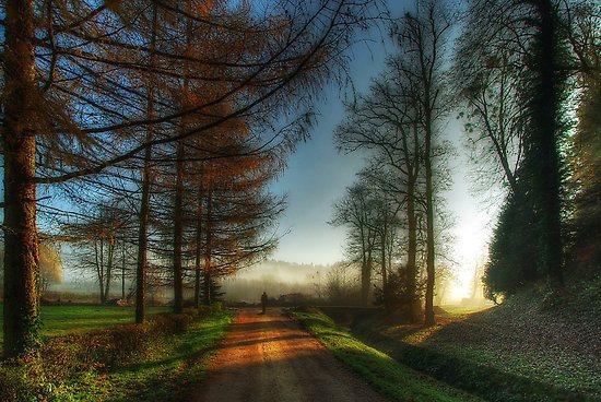 walk-on-a-beautiful-morning