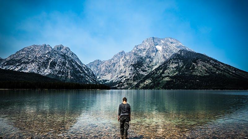 Infinite wilderness