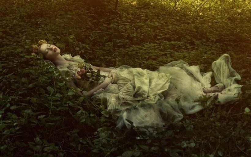 Forest sleep.jpg