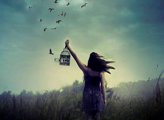 Free the Birds.jpg