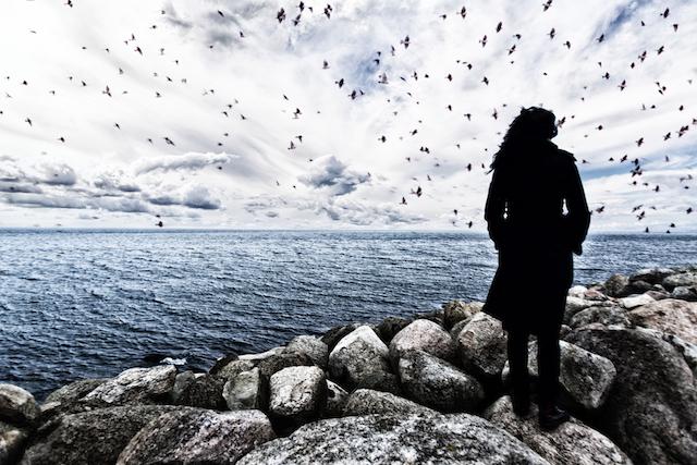 Alone with gulls.jpg