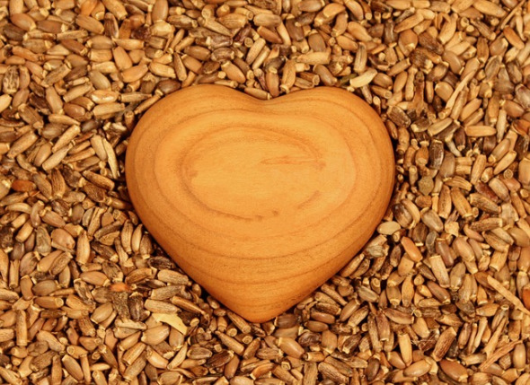 Seeds of love 3