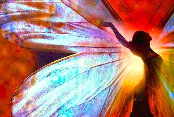 Radiant Butterfly.jpg